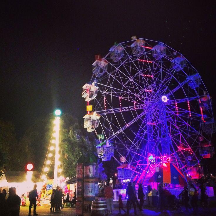 Ferris Wheel (Fringe Festival - Adelaide, South Australia)