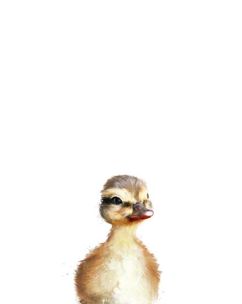 Little Duck Art Print by Amy Hamilton | Society6