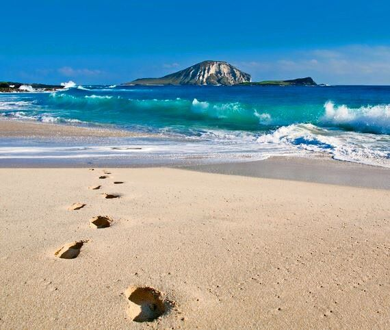 Sandy Beach: 29 Best White Sandy Beach Of Hawaii Images On Pinterest