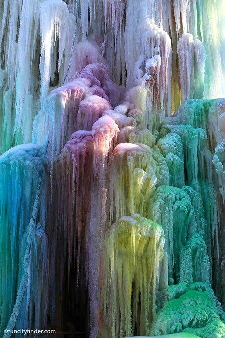 ľad strom Indianapolis Indiana