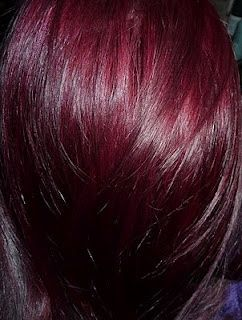 red purple hair - LOVE this color! this would look so good as low lights in black.