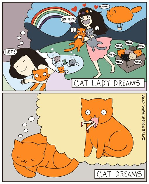 catversushuman:  Maybe it's why my cat drools on me when she sleeps.