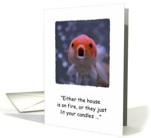 Goldfish birthday humor card (873914)