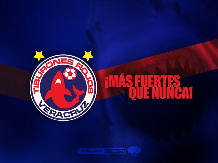 ¡Más fuertes que nunca! • Veracruz • #LigraficaMX