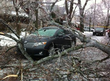 Toronto Ice Storm Dec 22, 2013
