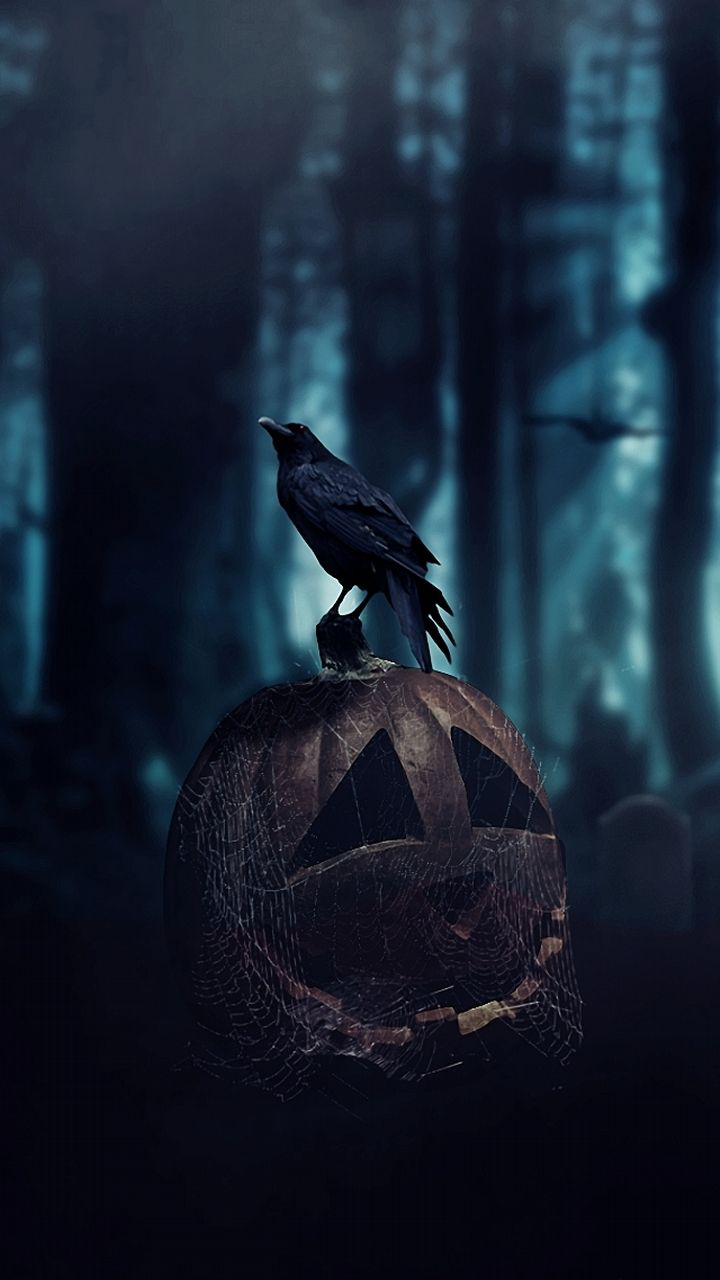 796 best images about Halloween on Pinterest | Halloween art ...