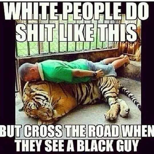 white people do shit like this,but cross the road when,they see a black guy,meme