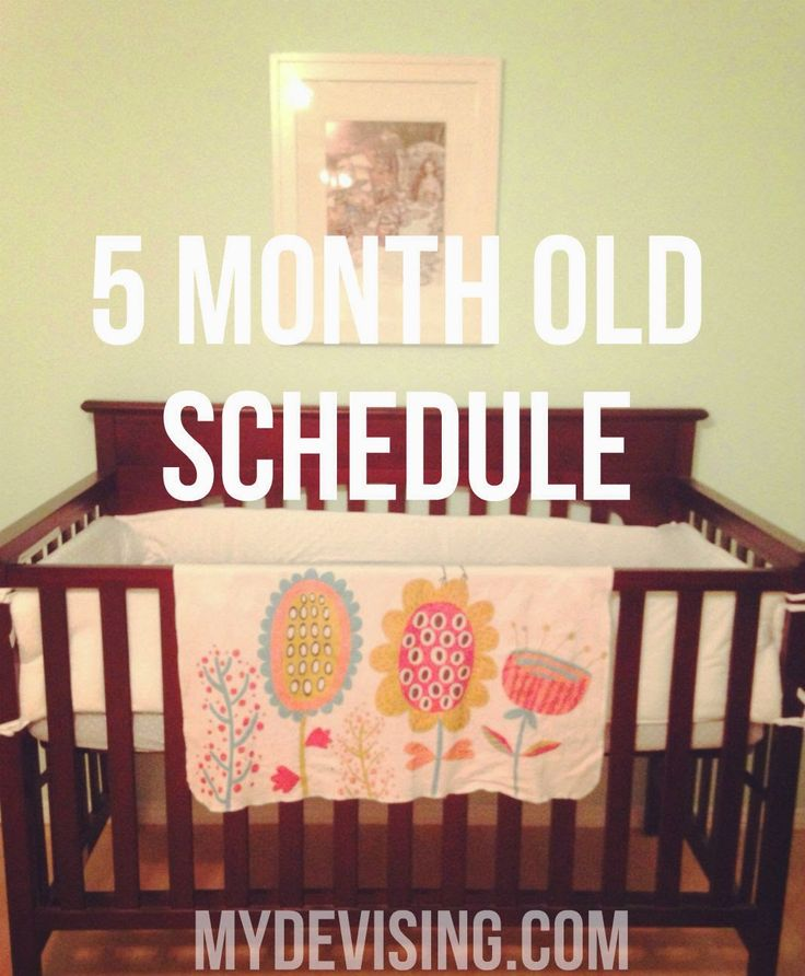 My Devising: 5 month old schedule