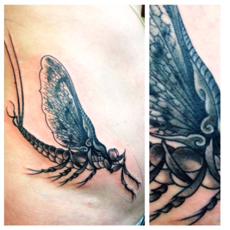tattoo of mayfly by chad hunt i got at name brand tattoo tats pinterest mayfly names and. Black Bedroom Furniture Sets. Home Design Ideas