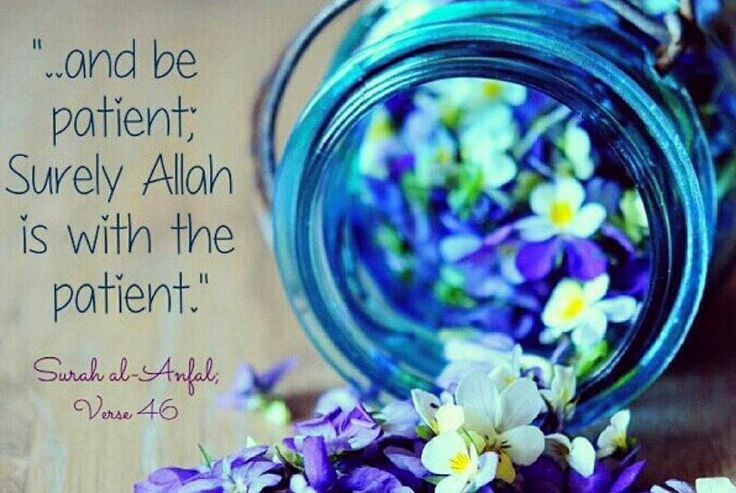 ,,, and BE PATIENT , surely ALLAH is with the Patient  -Quran : S.AL Anfal : 46