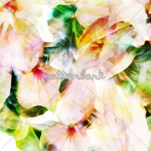 Blurred Flowers