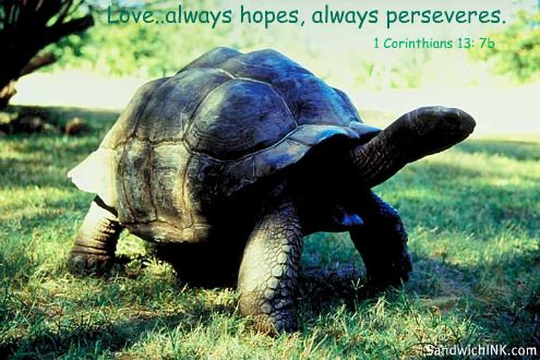 The Biblical definition of love from 1 Corinthians 13 4-8 and 13 includes that it always hopes - always perseveres - never fails