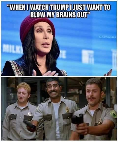 Cher not ONLY disappoints but I'm starting to think Hollywood is like a brainwashed cult. No discussions, vilify those who don't think like them. They won't hire conservatives. Almost sounds like Hitler!!!!