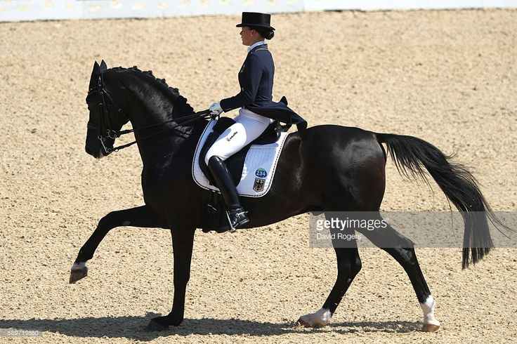 Dorothee Schneider of Germany riding Showtime Frh competes in the Dressage Individual Grand Prix Freestyle on Day 10 of the Rio 2016 Olympic Games at Olympic Equestrian Centre on August 15, 2016 in Rio de Janeiro, Brazil.