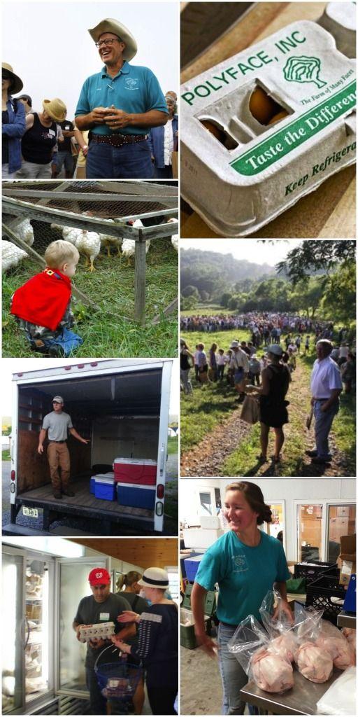 Joel Salatin Webinars - farmer direct marketing
