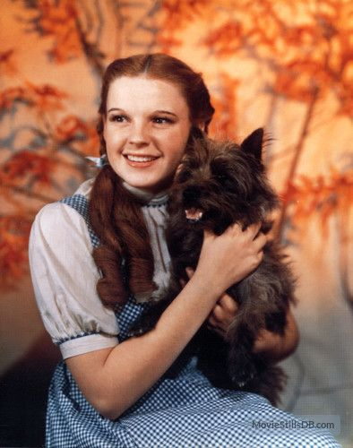 The Wizard of Oz - Promo shot of Judy Garland