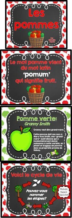 Pommes - Vous commencez le thème des pommes ou de l'automne, voici une Power Point qui peut vous aider à bien démarrer votre thème.