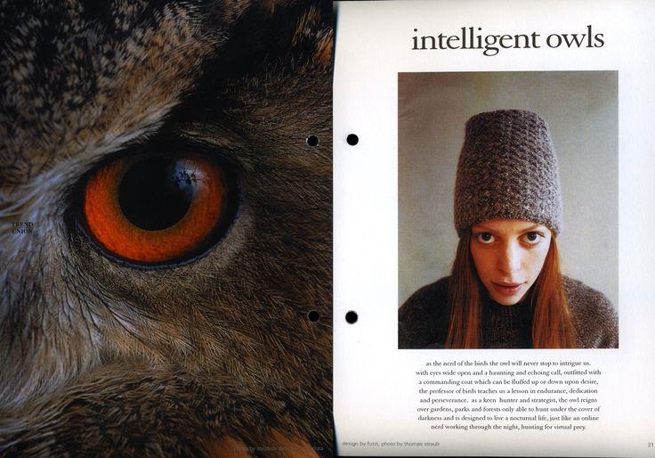 Intelligent Owls