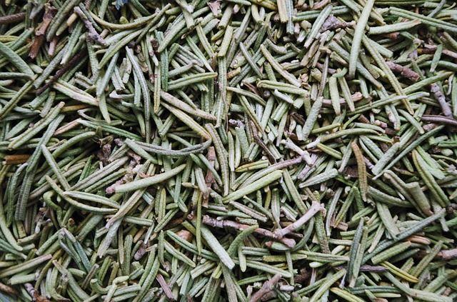 Mnohým nejsou jeho lékařské vlastnosti známé, ale rozmarýn byl široce užíván už starověkými Řeky. Rozmarýn je velmi populární v alternativní medicíně.