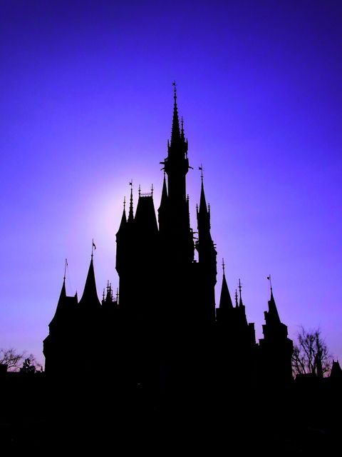 Silhouette Cinderella Castleの画像(写真)
