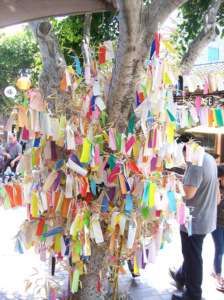 tanabata tree wishes