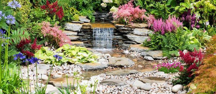liczba pomys w na temat pflanzen f r steingarten na pintere cie 17 najlepszych dom i ogr d. Black Bedroom Furniture Sets. Home Design Ideas