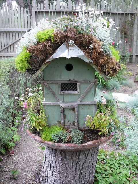 Fairy House by Urban Sea Star via flickr - love the wood trim and wire over window, well planted in old saucer, stump makes a great stand -