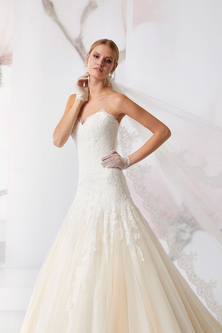 Magical Jolies decorated with chantilly lace and tulle