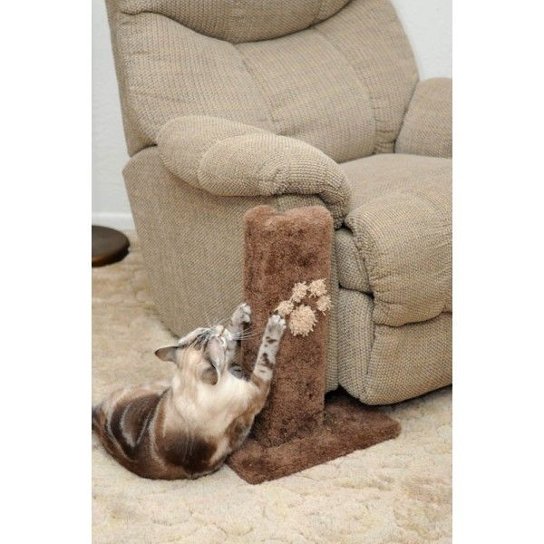 Corner Furniture Protector Cat Scratcher Los Animales Pinterest Cats And