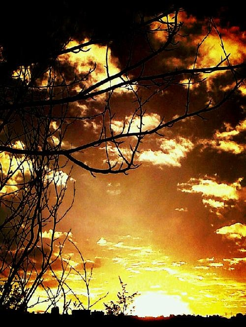 Johannesburg - Sun - PhotoShared By @DonoWhite