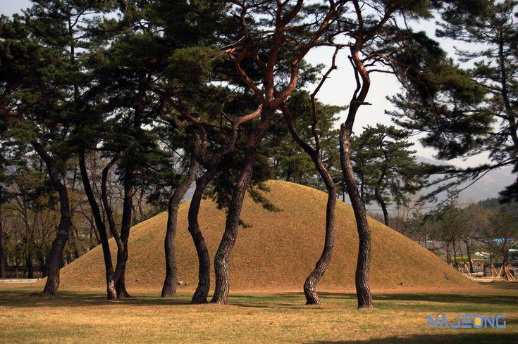 나정문화사 :: 태종무열왕, 백제 사비성 함락, 일통삼한으로 가는 길을 열다.