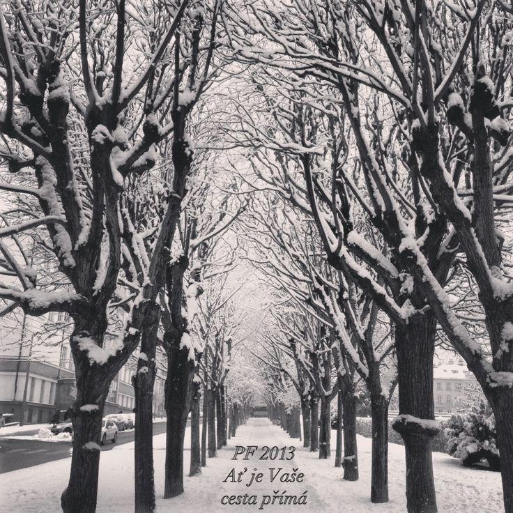 PF 2013 – Ať je Vaše cesta v novém roce přímá /// May your path be in the new year straight