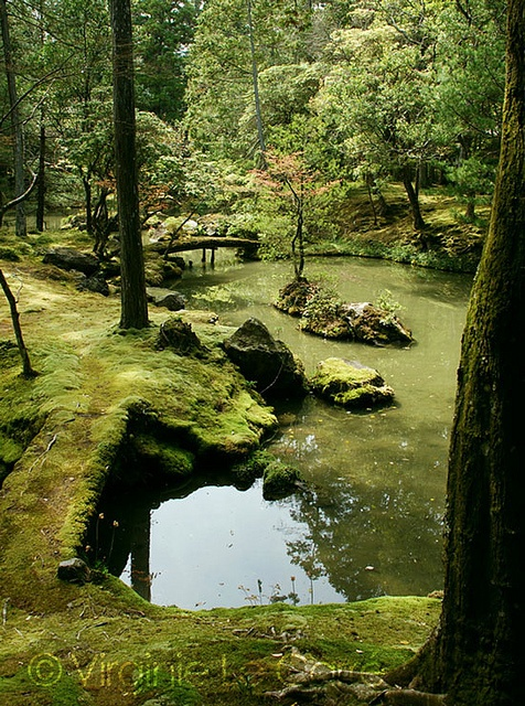Koke Dera moss temple, Kyoto by Virginie LC, via Flickr