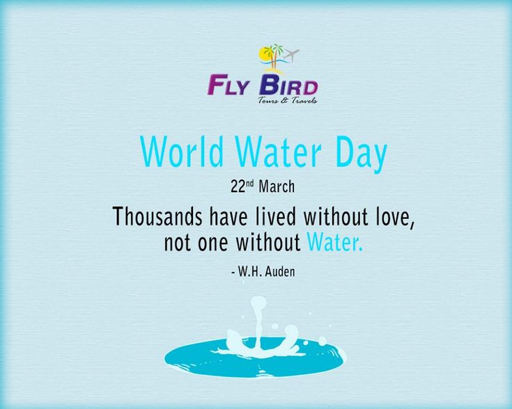 22 March, World Water Day.  Thousands have lived without love, not one without water. - W.H. Auden #live #life #saveWater #worldWaterDay #flyBird