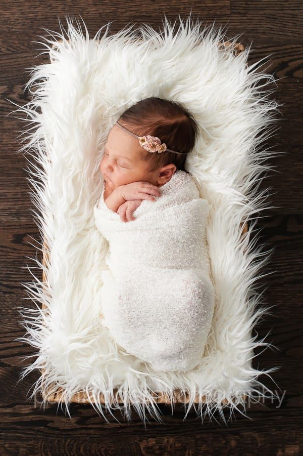 newborn in basket. Pam Lägger Photography