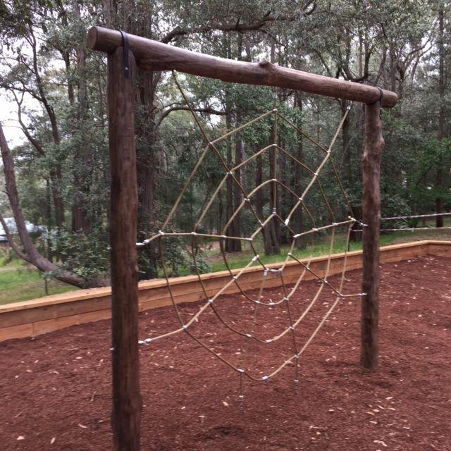 Natural log Spider net