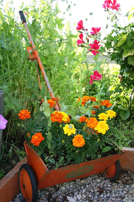 Great container idea for a country garden.
