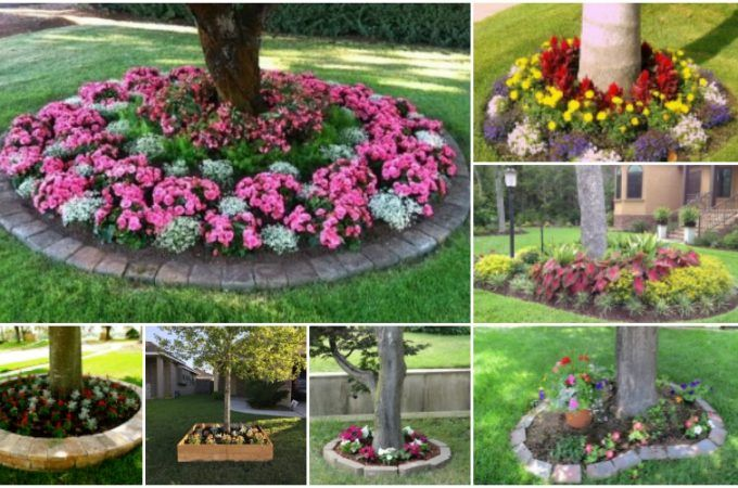 314 best images about tuin garden on pinterest gardens for Small trees for flower beds