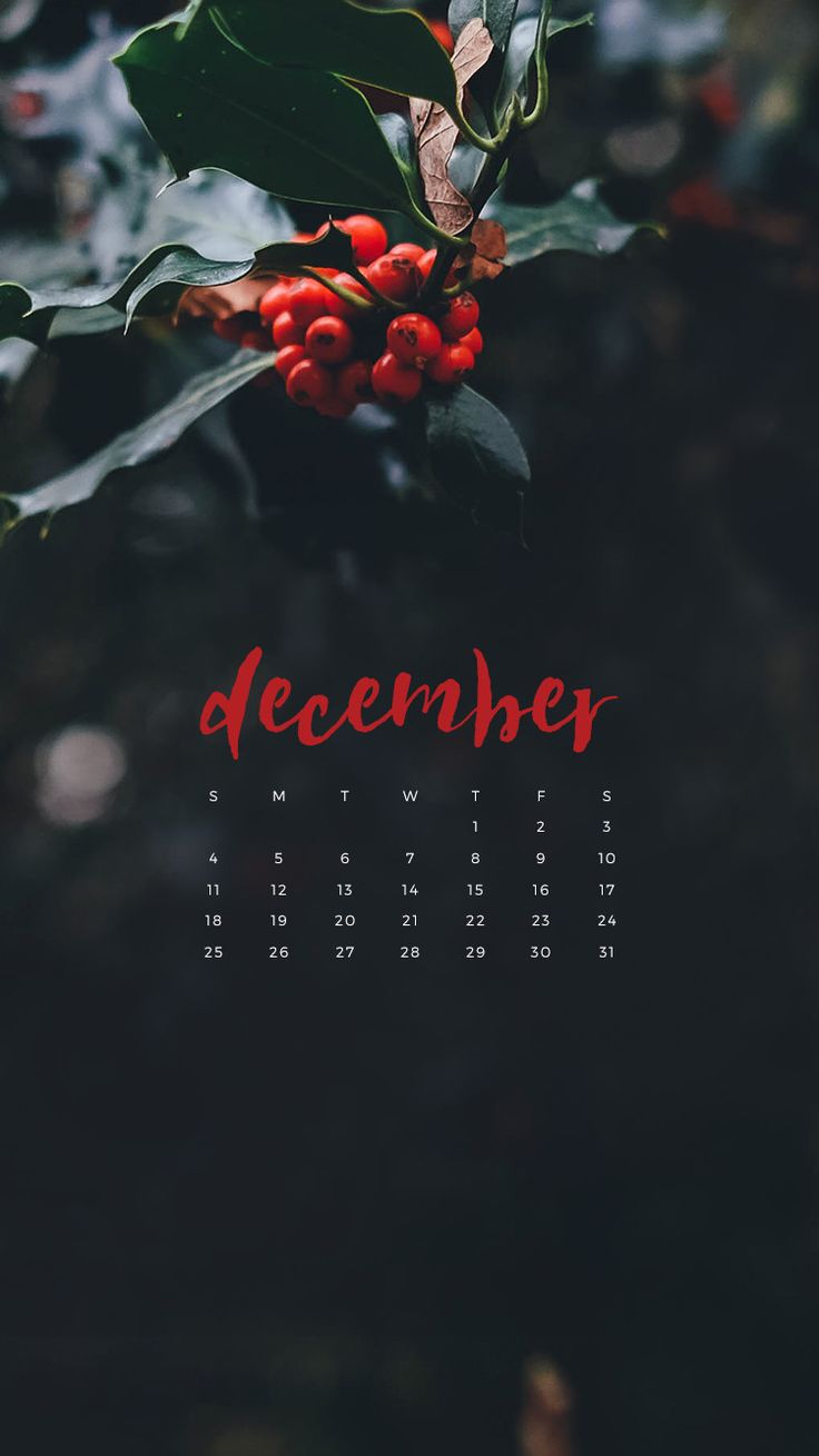 Enjoy This Free December 2016 Calendar Wallpaper Available For Download Your Desktop Or IPhone