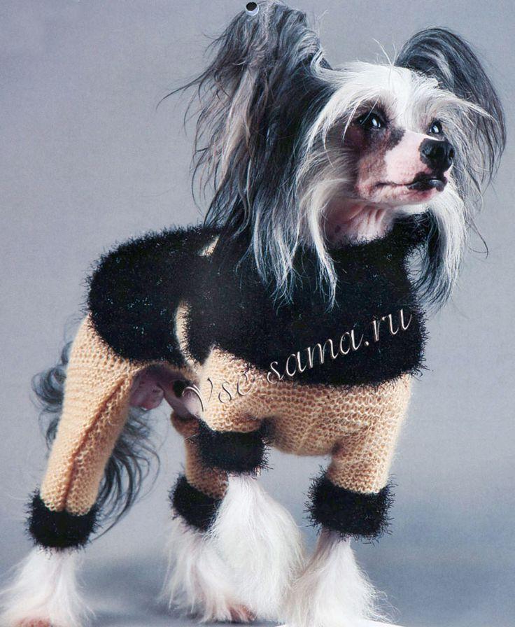 Бежевый комбинезон с черными отворотами и накидкой для собаки