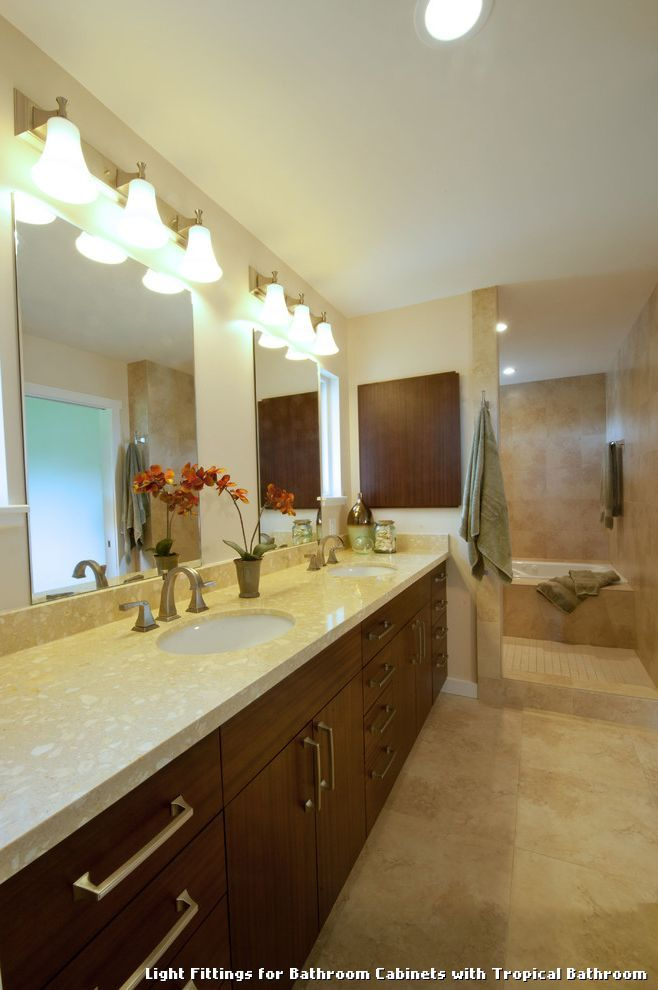 Light Fittings for Bathroom Cabinets with Tropical Bathroom with a Kitchen Fixtures