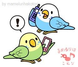 "hello!! Budgerigar,budgie ""Sekisei-inko"" http://line.me/S/sticker/1196870 LINE STORE URL http://line.me/S/shop/sticker/author/6943 FACEBOOK PAGE https://www.facebook.com/mamelurihakotori Thank you for seeing."