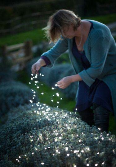 Sarah Raven arrangingn solar powered fairy lights