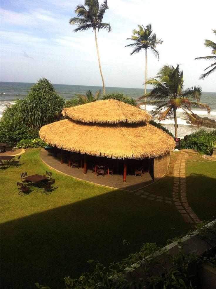 Путешествие. Шри-Ланка. https://foodmag.me/pervaya-poezdka-na-shri-lanku  На Шри-Ланку мы полетели впервые в 2014 году. Путешествуем мы всегда самостоятельно, забронировали отель и купили билеты на самолет. На это потратили час времени. Я заранее изучила пляжи и остановилась на Бентоте. Считается, что это один из лучших пляжей Шри-Ланки. Визу получать не нужно, она ставиться у них по прилету и действует 30 дней! Стоила на тот момент 30 $ (сейчас 40 $). Причем, если выезжаешь куда-то за…
