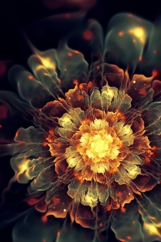 .: Inspiration, Colors, Fractal Art, Beautiful, Blooming Heat, Things, Flowers, Fractals