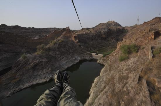 Flying Fox Jodhpur