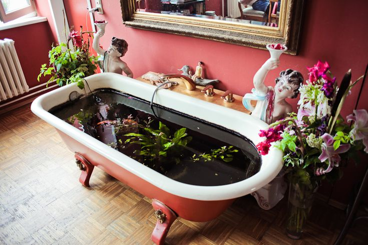 30 best images about indoor koi pond on pinterest for Garden pool from bathtub