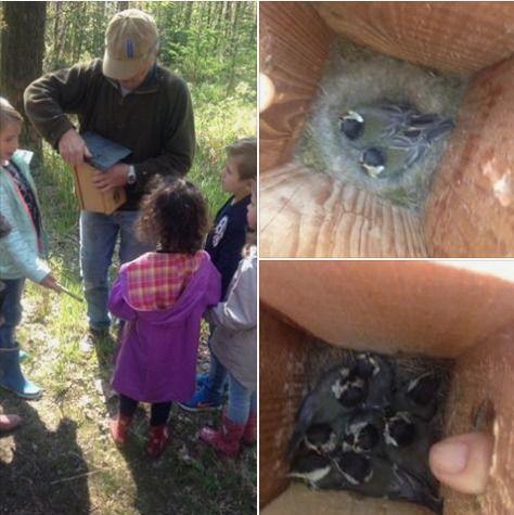 Er zit veel leven in vogelhuisjes die de leerlingen van De Rietgors zelf hebben gemaakt. Leuk om te zien en wat een heerlijke dag om het bos in te gaan!