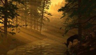 Sunset Digital Blasphemy Wallpaper HD Forest 1152x864px Resolution