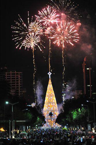 Christmas   Mexico City